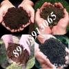 смеси из - навоз+чернозём+грунт, торф+перегной+земля, щебень, песок, дрова